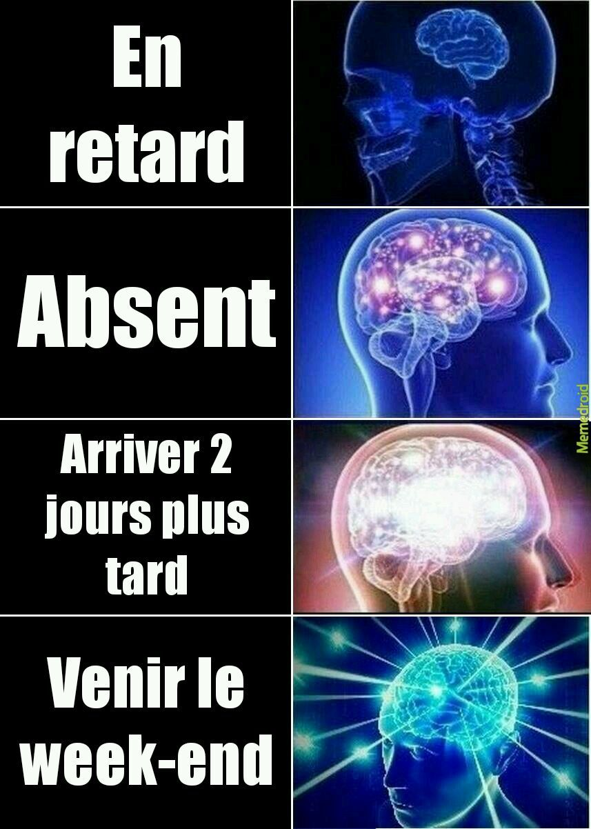 Brain - meme