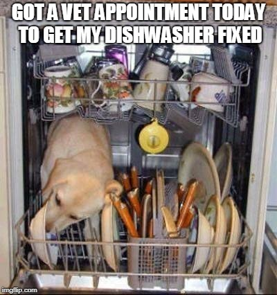 we just put them away licked clean who wants to come to xmas dinner? - meme