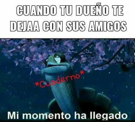 Momentos - meme