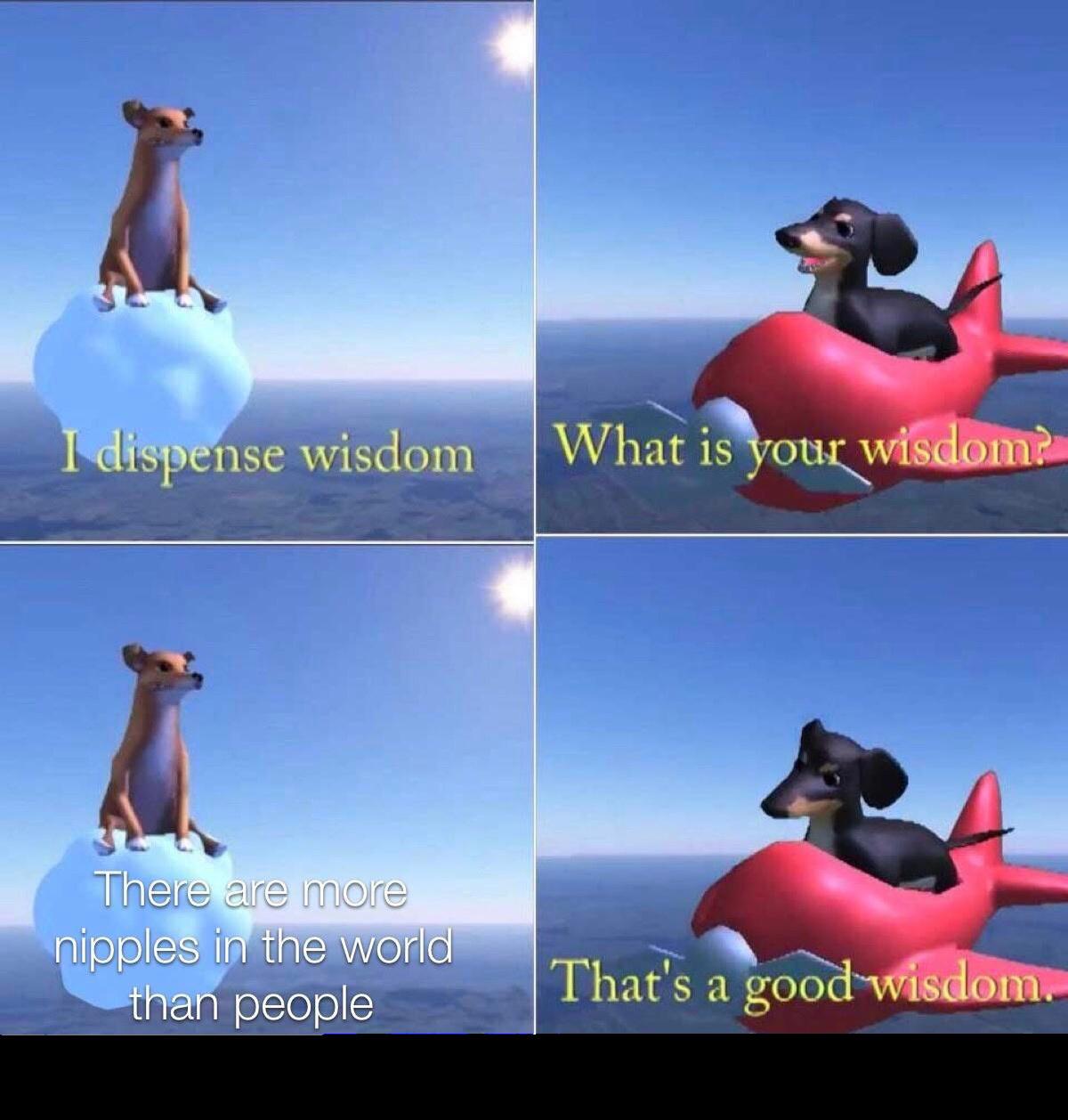 Good wisdom - meme