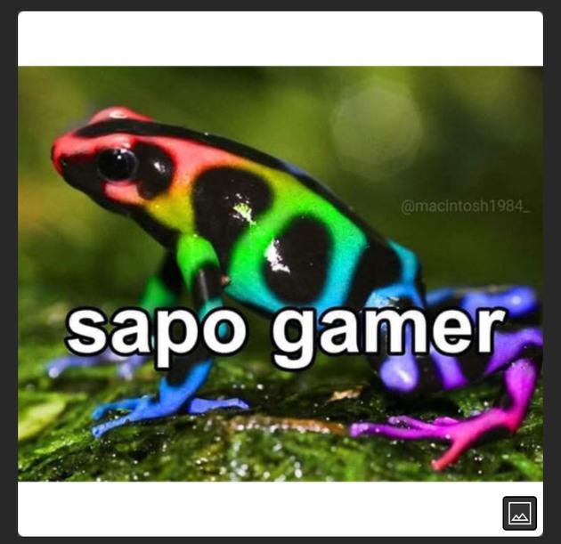 sapo gamer - meme