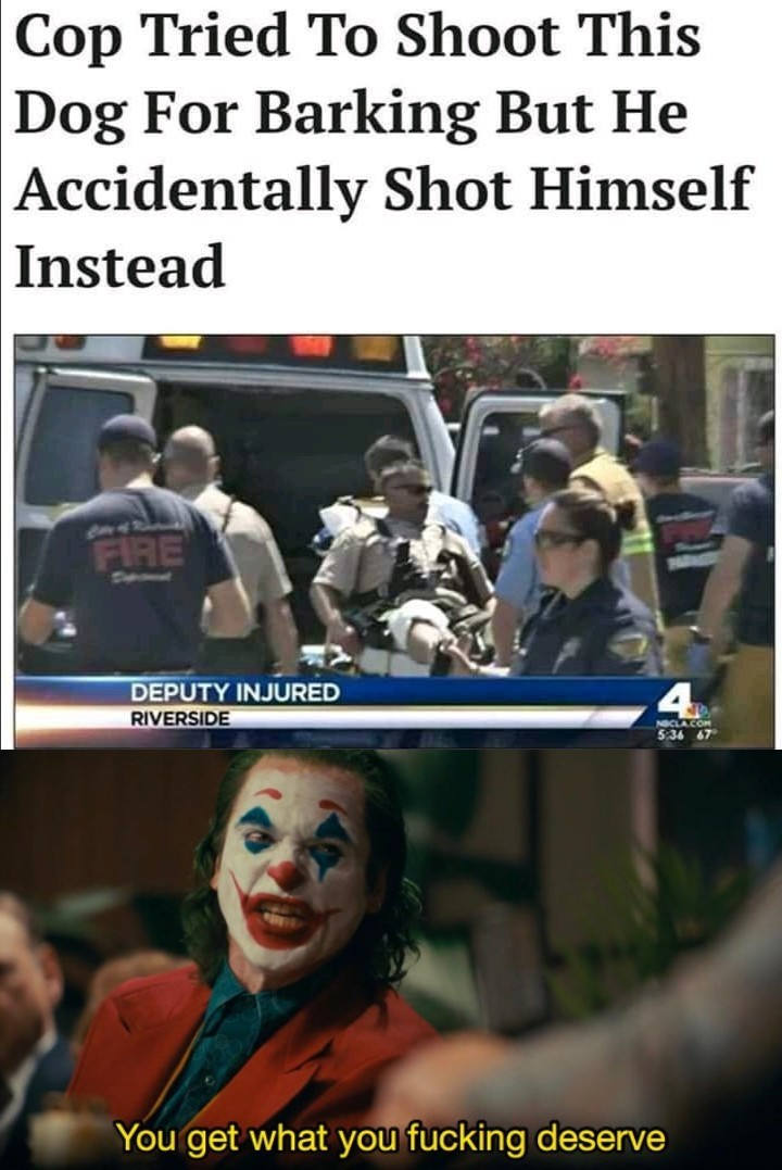 Fucking moron (don't defund the police tho) - meme