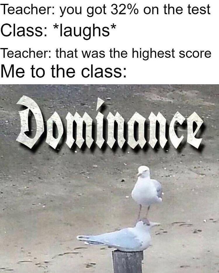 dominance - meme