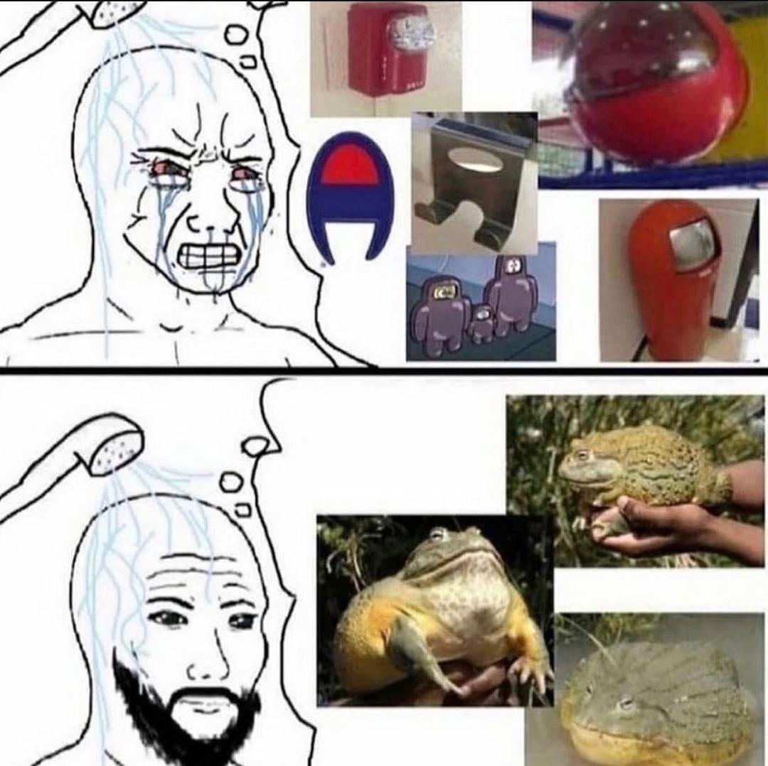 mmh froggy - meme