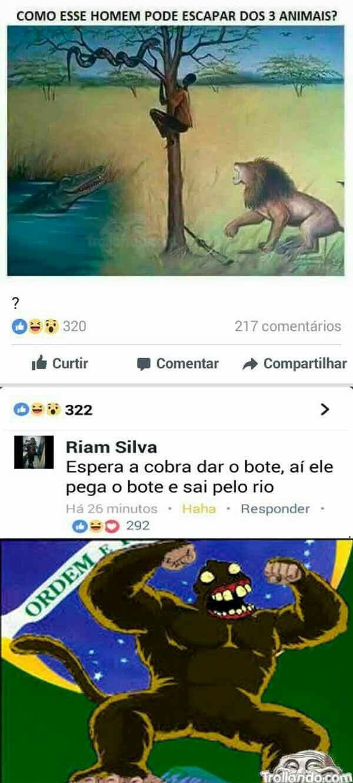 O Brasil é rico em brasileiros - meme