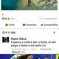 O Brasil é rico em brasileiros