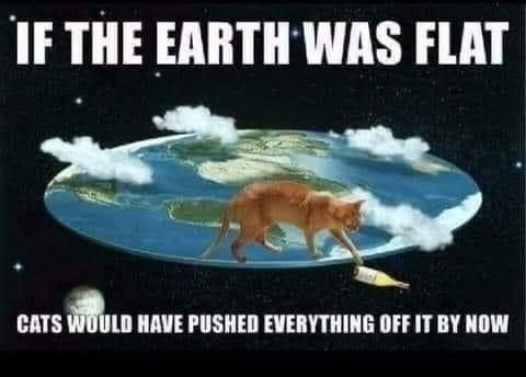 Flat Earth Finally Debunked - meme