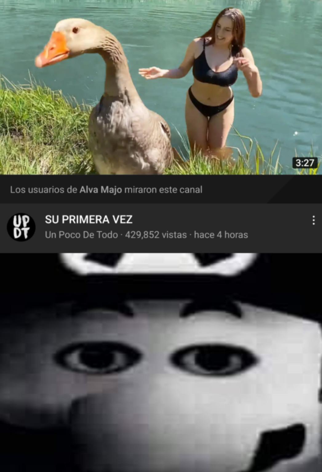 Memes en modo oscuro