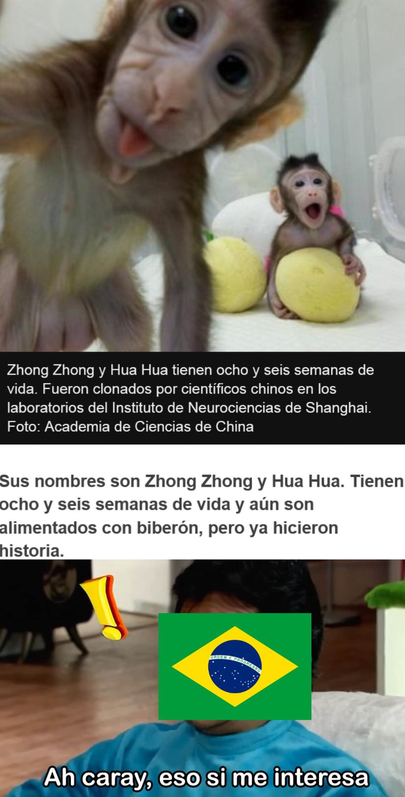 eu macaco - meme