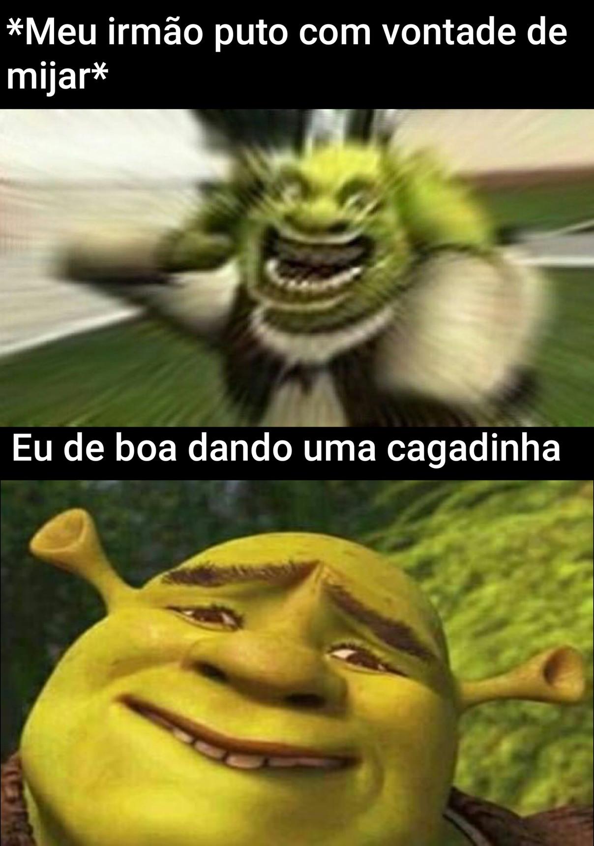 Cocozin - meme