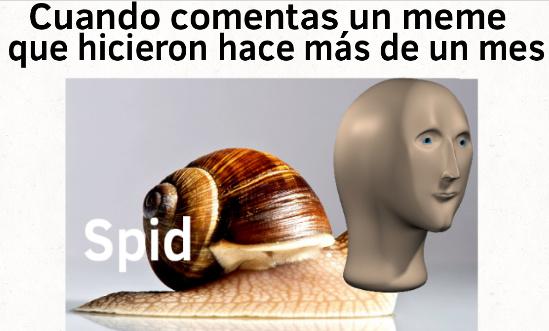 Spid - meme