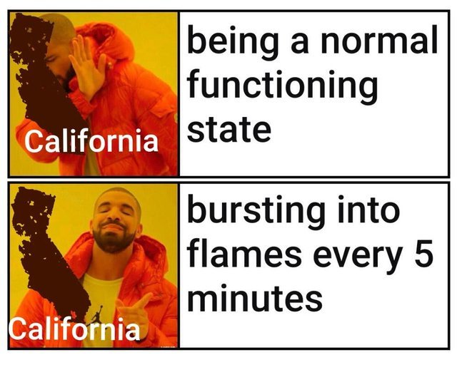 Shits on fire yo. - meme