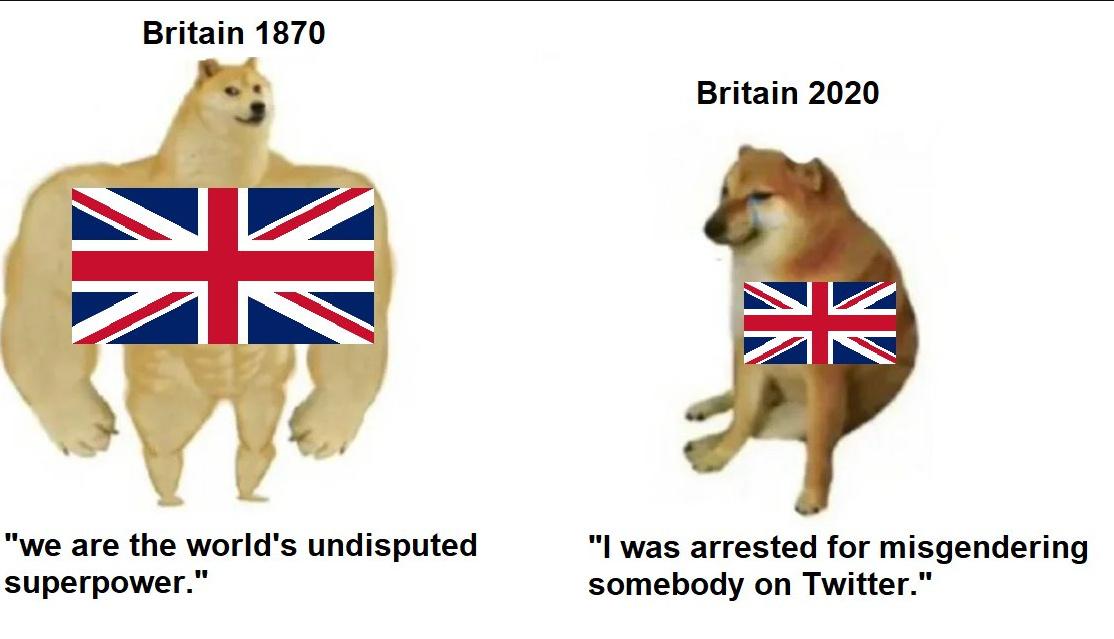 dongs in an island - meme