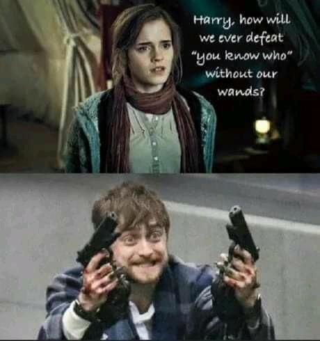 Harry Potter - Multiverse - meme