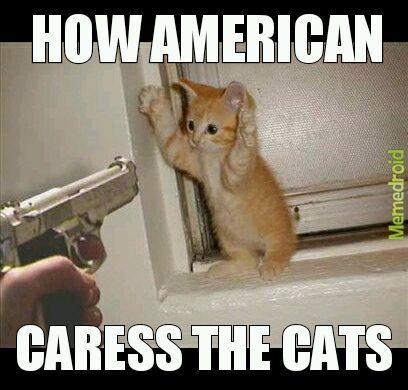 How american - meme