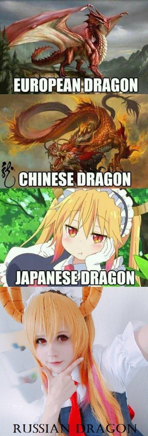 I like dragons - meme