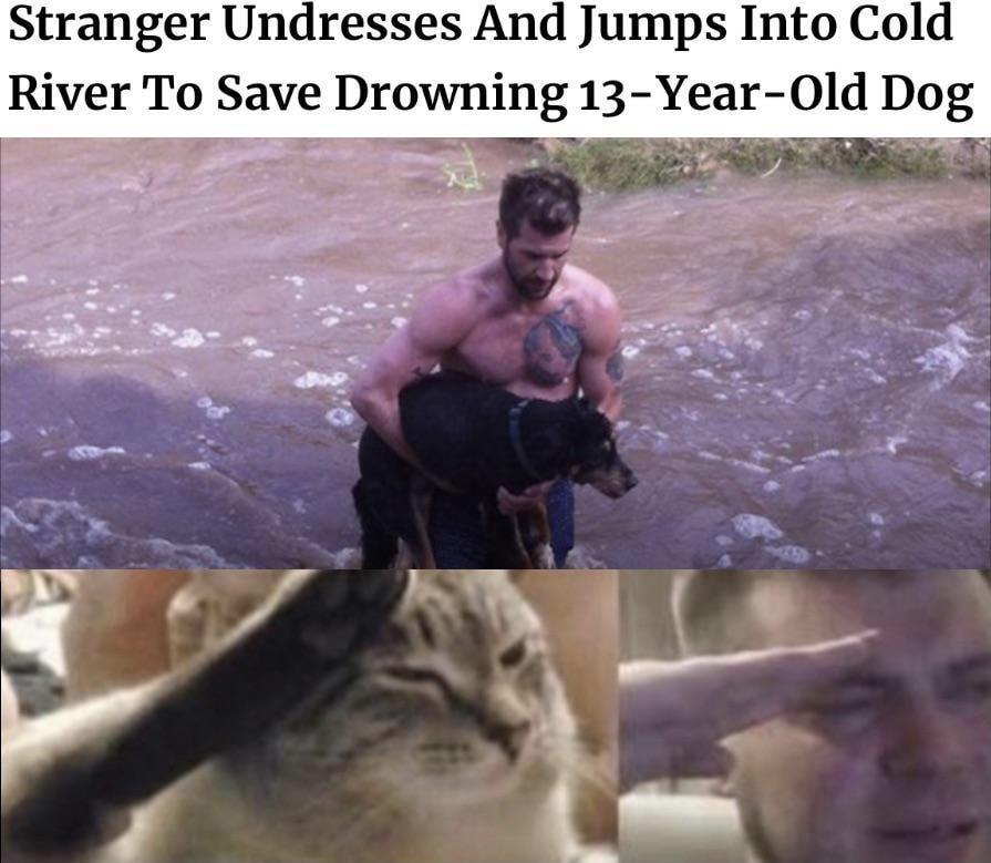Bruhhhhhh - meme