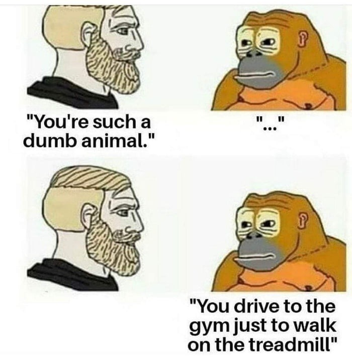 Dumb analmal - meme