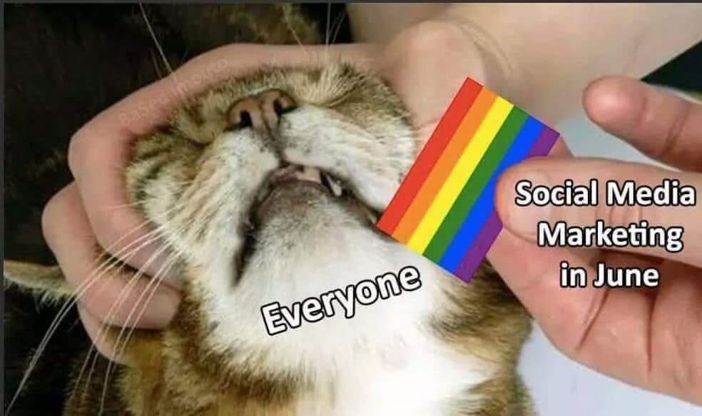 HoMopHobEs EvErYwHeRe - meme