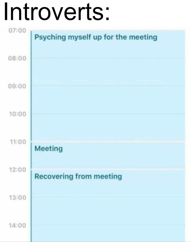 How introverts deal with meetings - meme