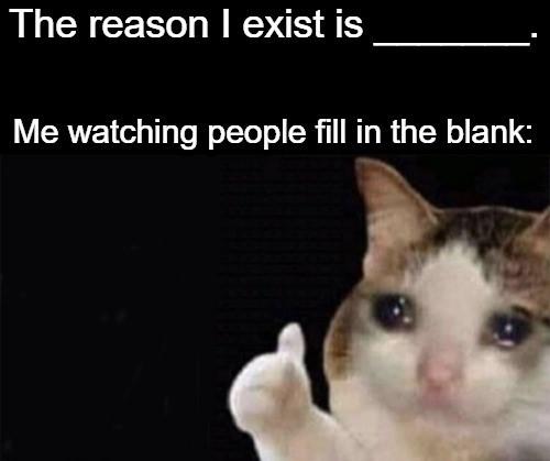 Go ahead, fill in that blank - meme