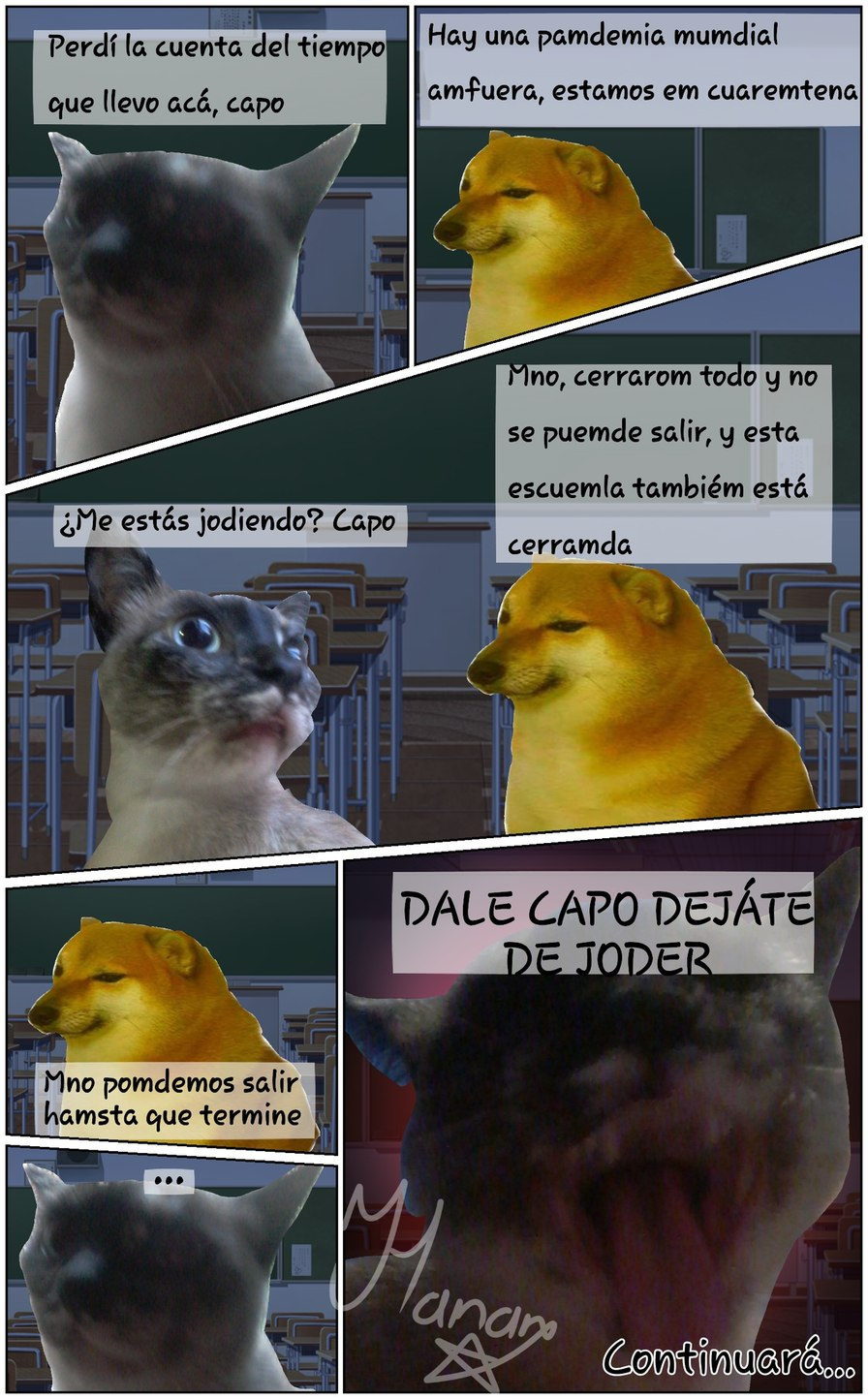 Pamdemia global, capo. - meme