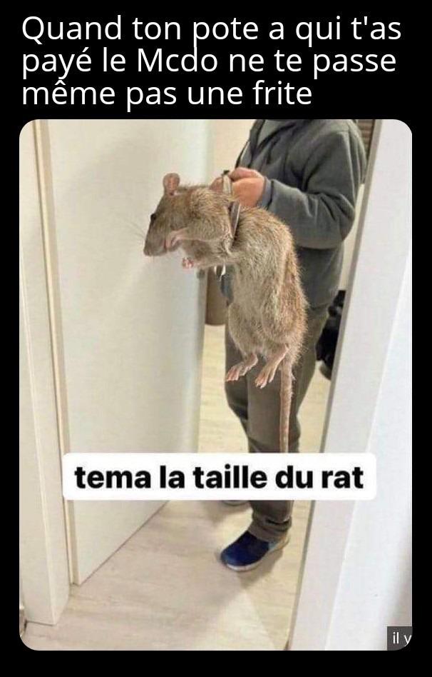 Jean-Eude si tu lis ça, tu me dois 7.95€ (espèce de rat) - meme