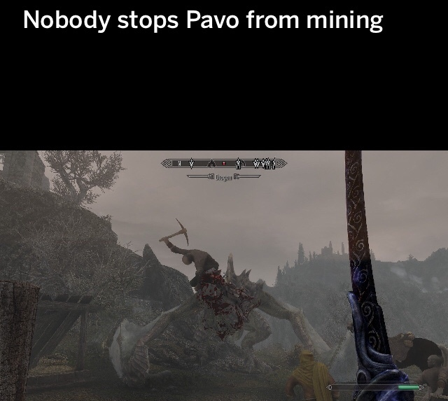 don't mess with Pavo - meme