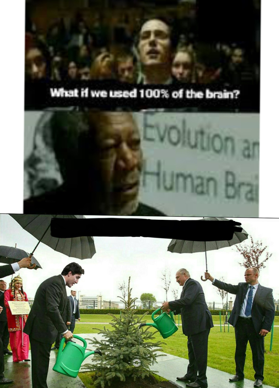 Stupidity am I right? - meme