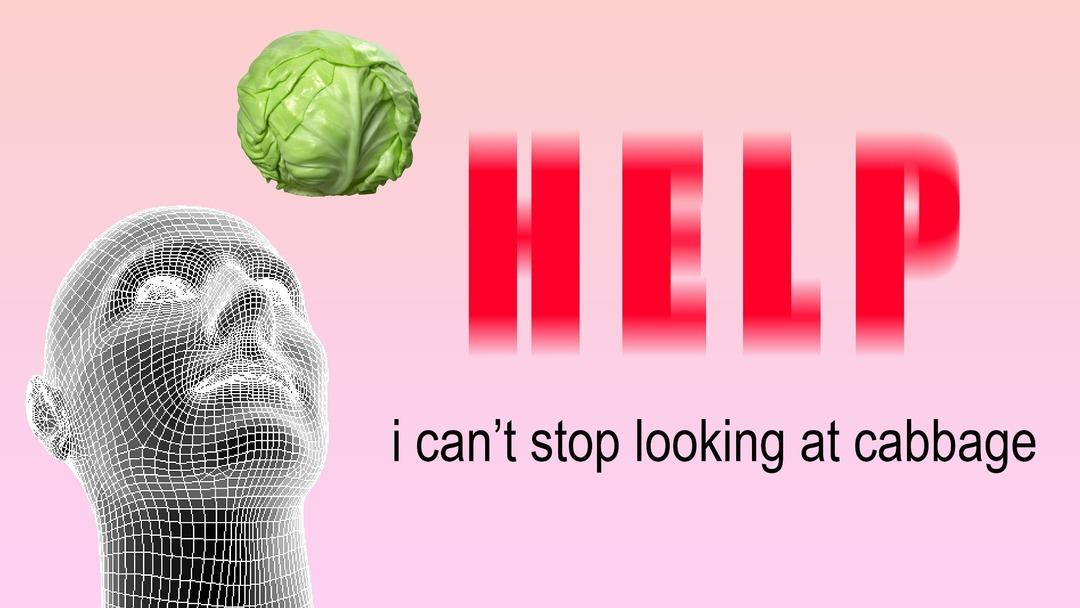 My Cabbages - meme