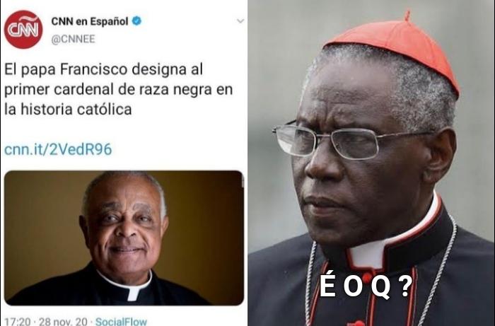 Pra quem não sabe o da direita é cardeal - meme