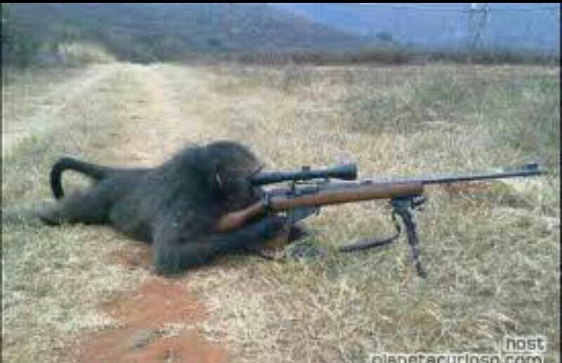 Brasil sniper - meme