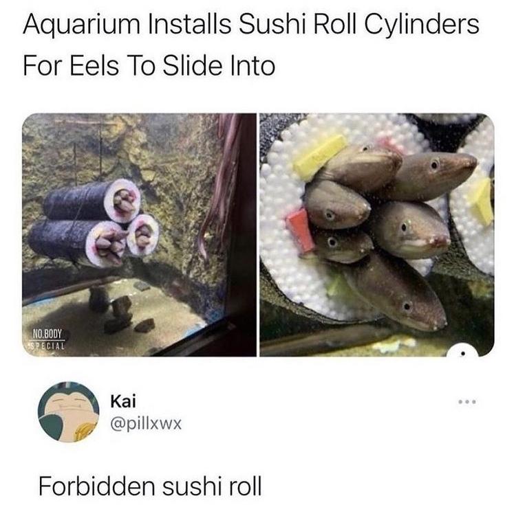 forbidden sushi roll - meme