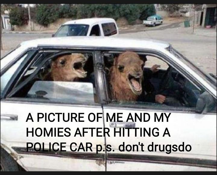 Don't drugsdo - meme