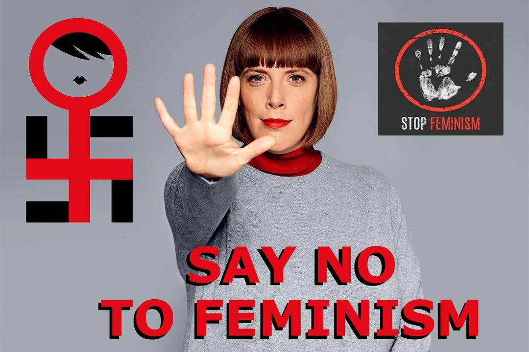 Say No To Feminism - meme