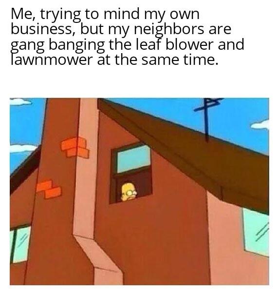 Noise - meme