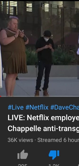 So I click on a random video of this whole Netflix protest thing and the first thing I see. - meme