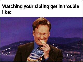 Sibling takes the fall - meme