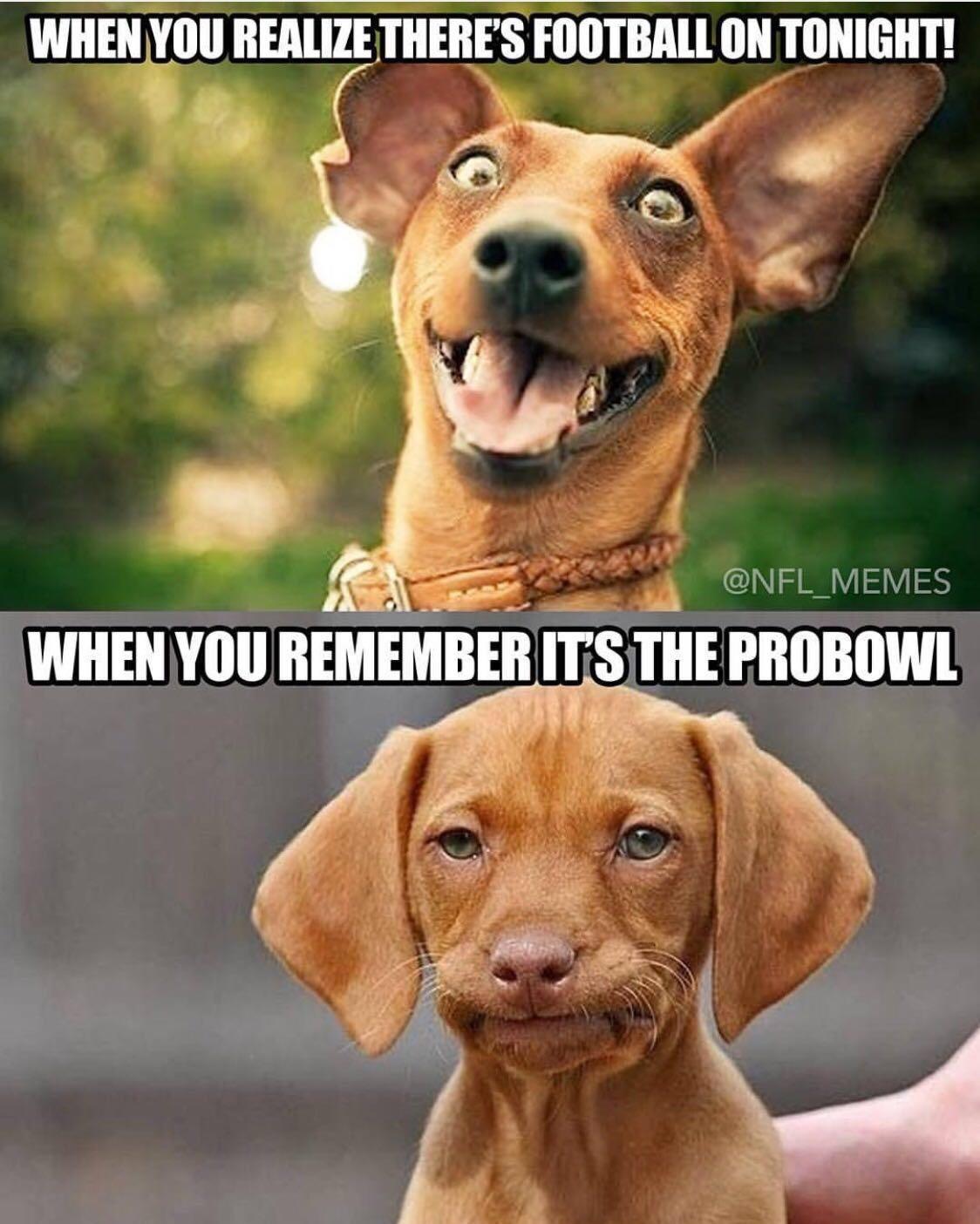 pro bowl - meme