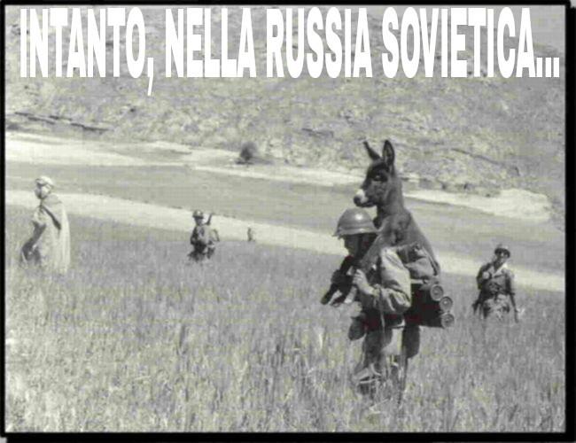 Gli asini cavalcano i militari, lol - meme