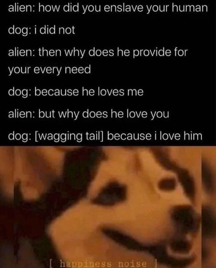 Because doggo. - meme