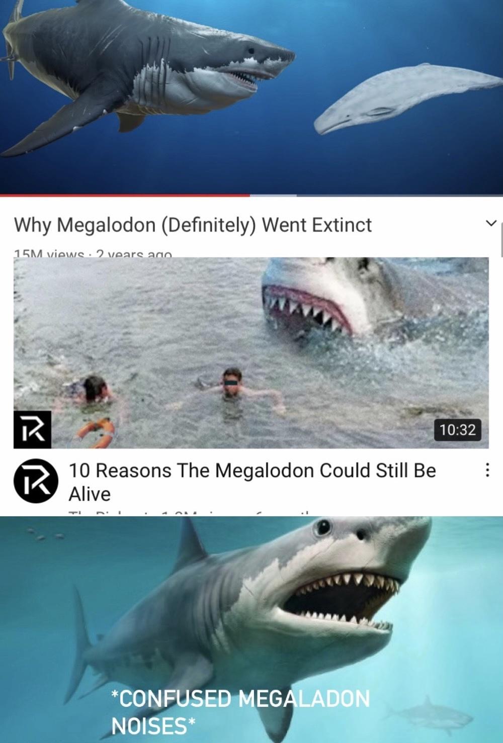 damn sharks - meme