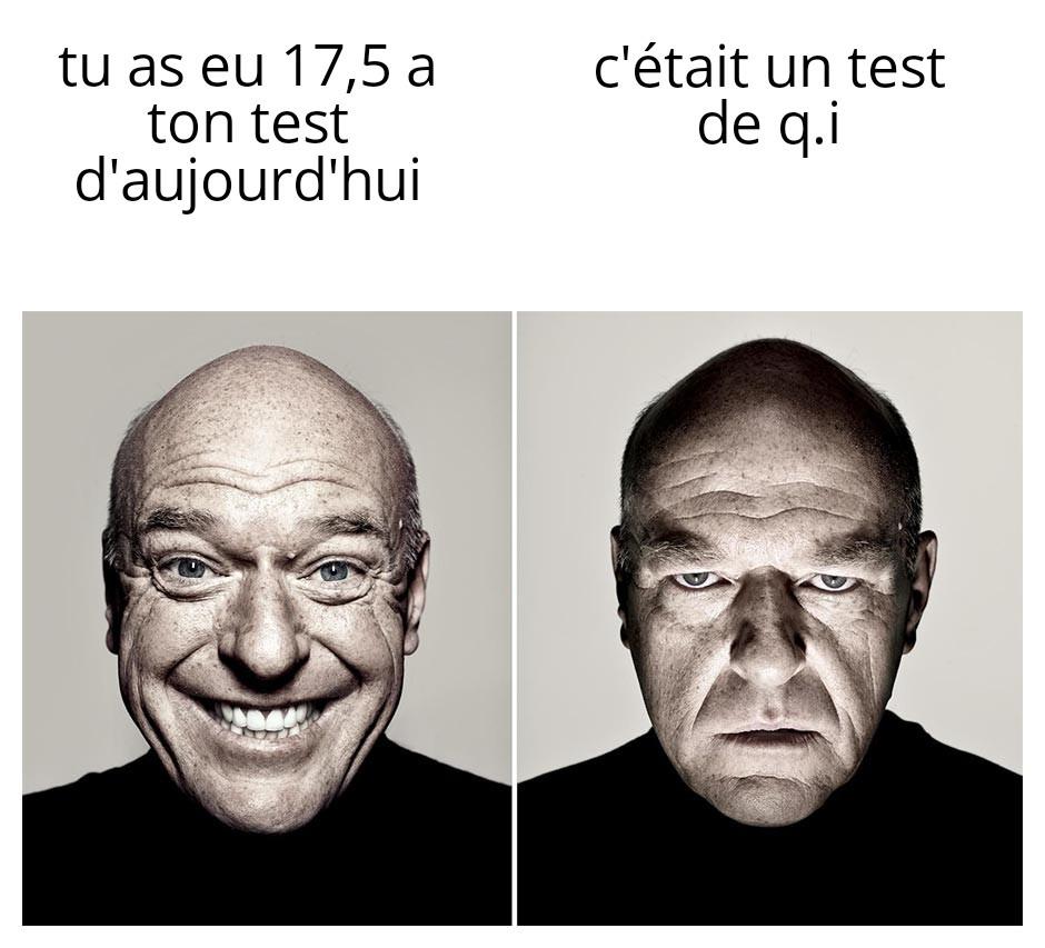 Intelligence no stonk - meme
