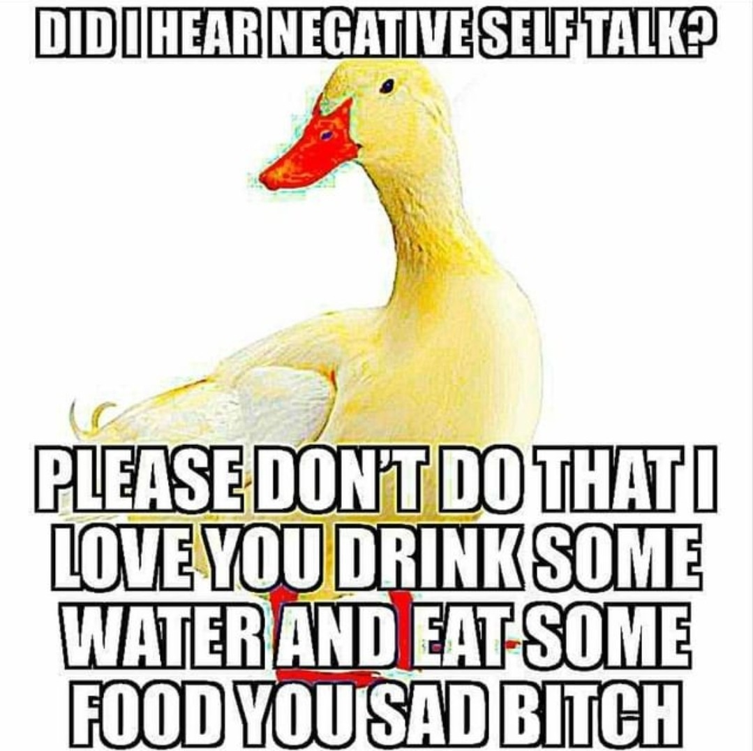 You're about to get the ducking of a lifetime - meme