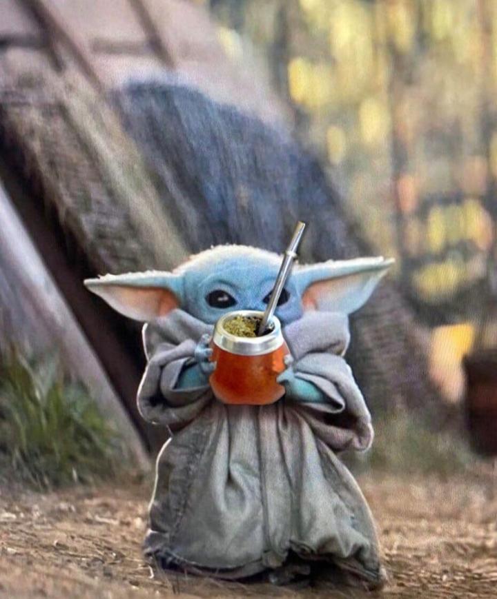 Yoda chikito - meme