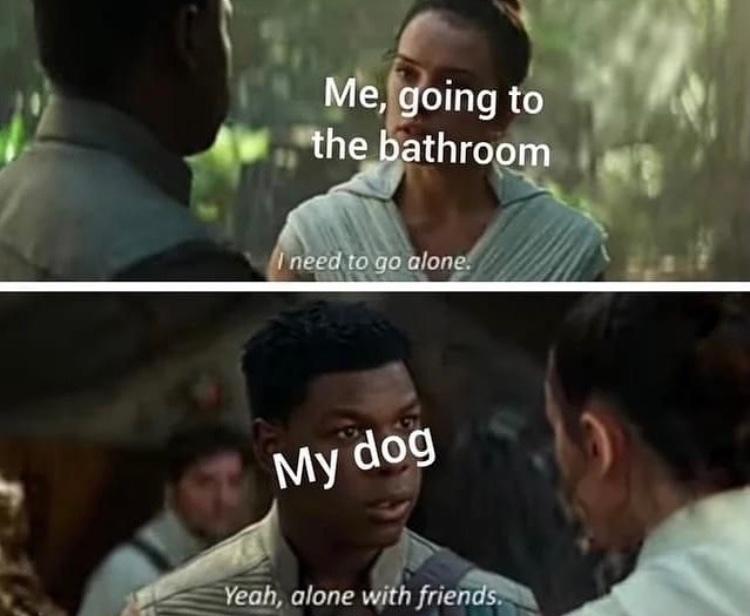 you need backup for ze poopin - meme