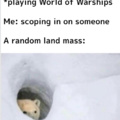 Only WoWs players will understand