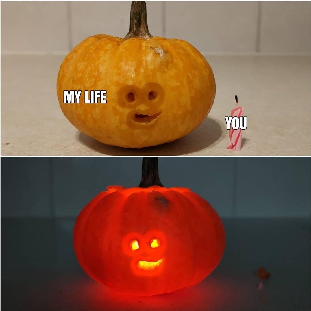 You illuminate my pumpkin. - meme