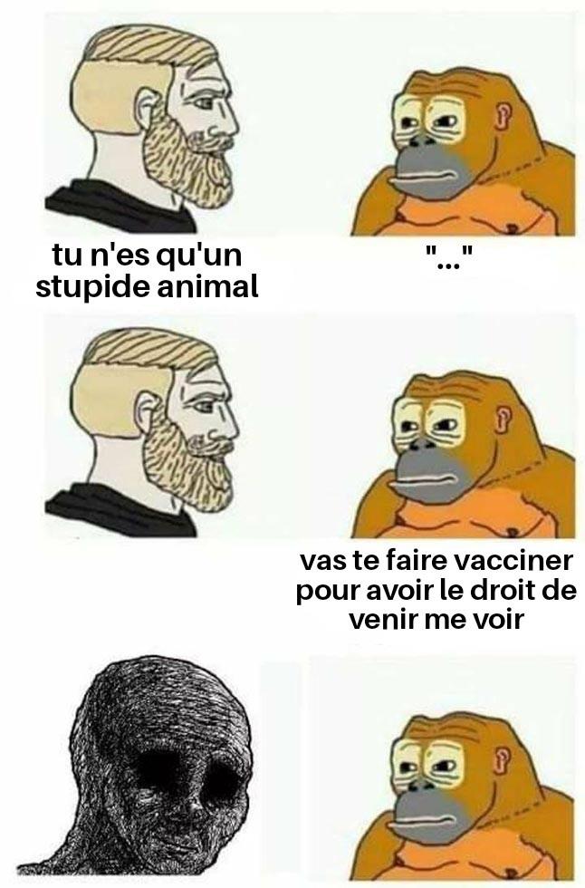 T. I. T. R. E - meme