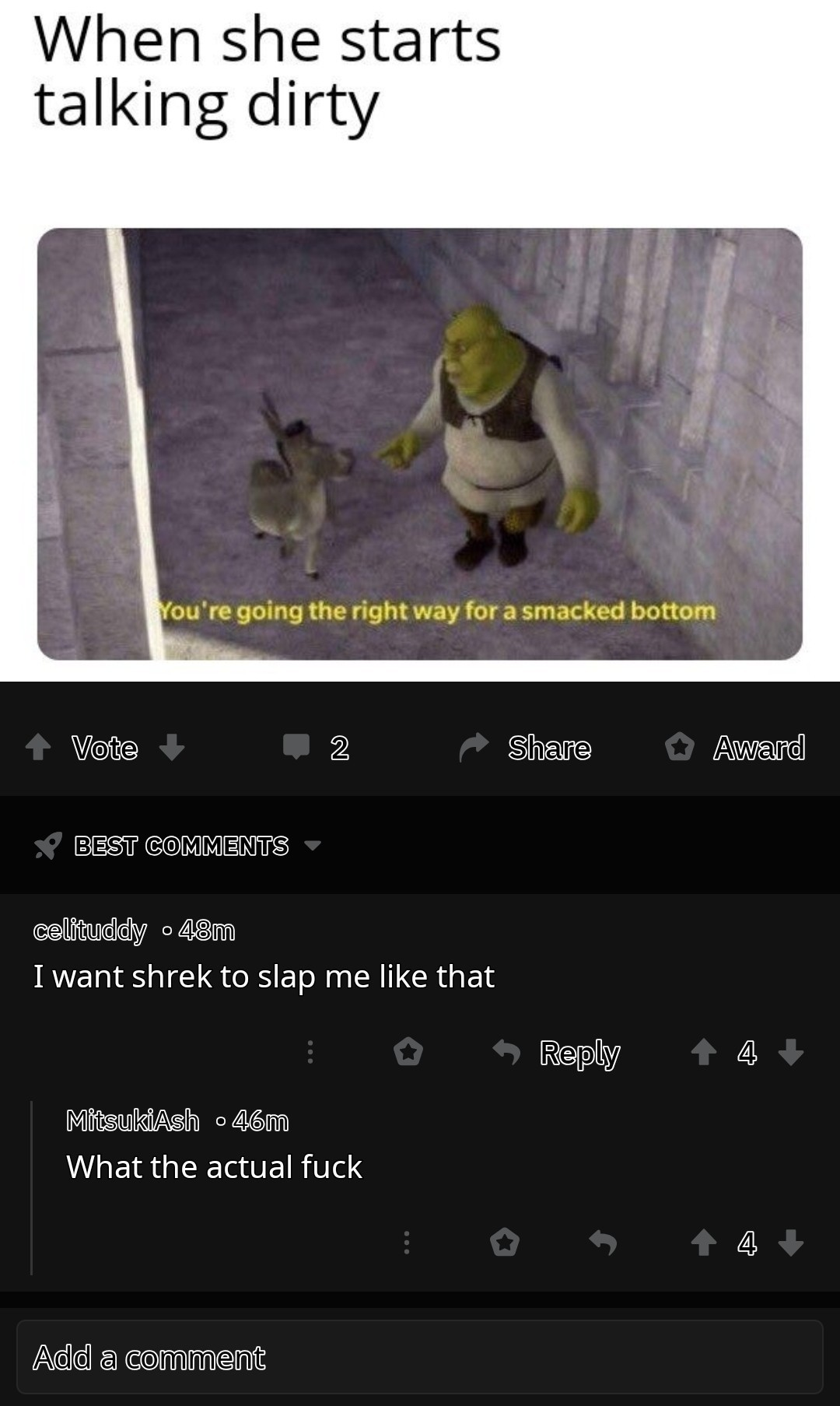 Shrek doesn't dissatify women - meme